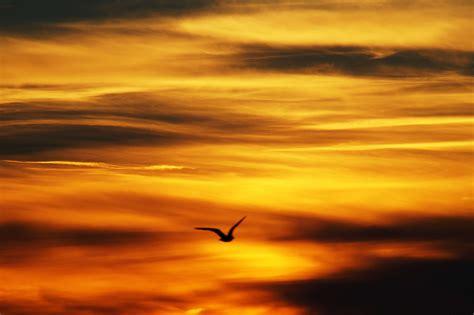 dramatic sky seascape sunrise water motion wallpaper