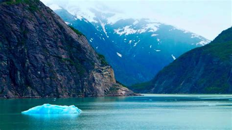 fjord seattle cruising tracy arm fjord alaska youtube