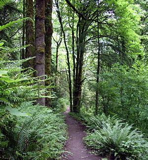 forest park (portland, oregon) wikipedia