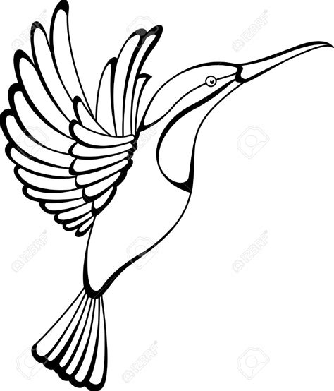 hummingbird outline tattoo hummingbird clipart outline