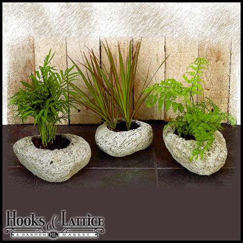 Rock Garden Planters Set Of 3 Small Assorted Volcanic Rock Planters Range In Size