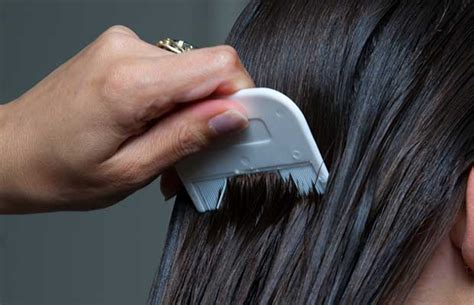pubic hair comb breaking the cycle how to get rid of head lice
