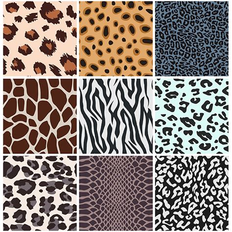 turing pattern in nature animal patterns in nature www pixshark com images