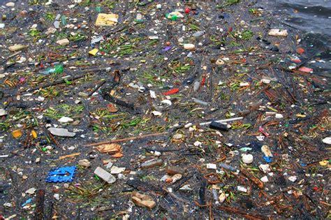plastic pollution t a belize home barricate di carta