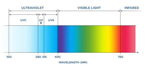 uv l and wavelength uv damage johnson and johnson vision care companies