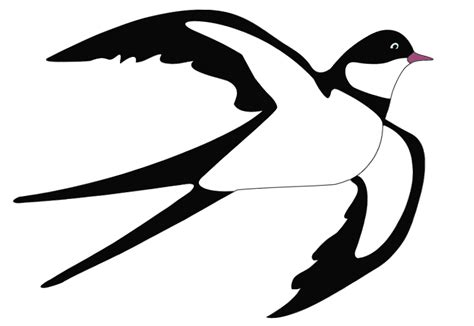swallow clipart free download clip png clipart gallery yopriceville high quality