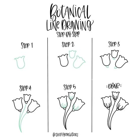 how to draw doodle pdf botanical line drawing 23 by peggy dean thepigeonletters