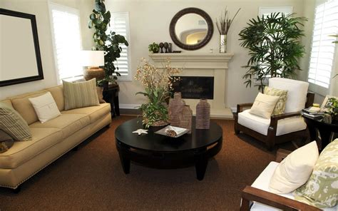 simple   decorate small living room  brown color