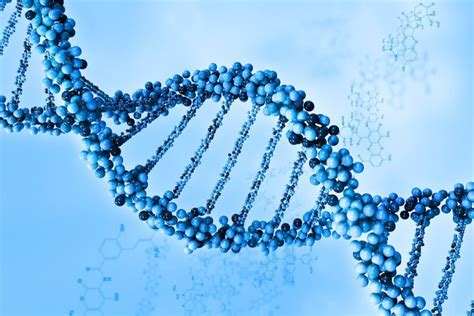 imágenes de kamasutras 2015 enfermedad de adicci 243 n y gen 233 tica lasdrogas info