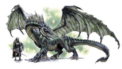 los dragones: cuales son,como son y donde habitaban