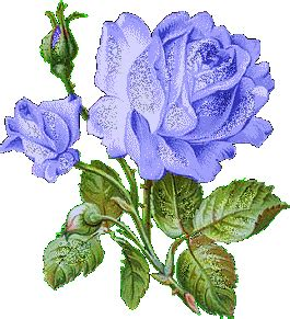 Send Flowers By Mail - glittering purple roses graphic desiglitters com