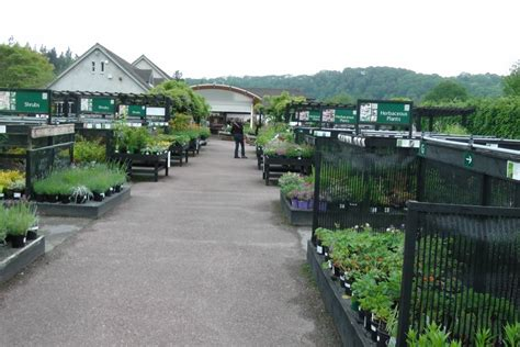 garden centre layout design rosemoor gardens devon justgardencentres
