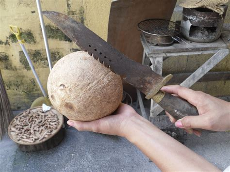 how to open a coconut at home the fastest way my family health blog