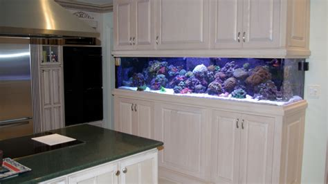 Plywood Kitchen by Chicago Custom Aquariums Amp Fish Tank Company