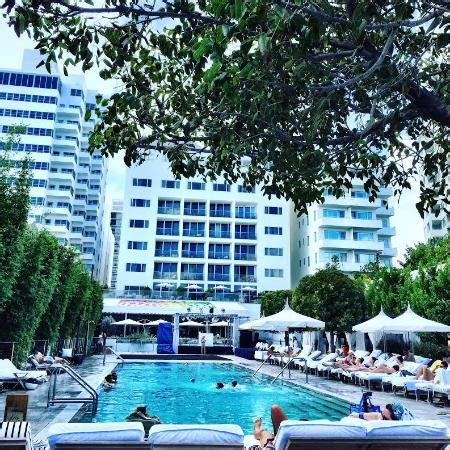 day at the pool @ natulis was heaven!! picture of