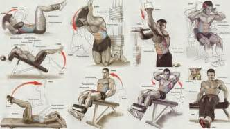 bench for abs workout workout chart all bodybuilding