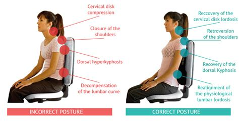 how to a better posture try komfort cushion find out all the benefits of a