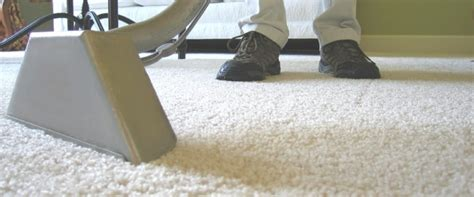 carpet and upholstery cleaner hire hire experts for carpet and upholstery cleaning