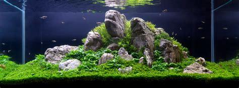 jen williams naturescaper aquascaping  aquatic education