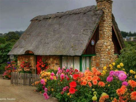 the flower cottage tiny cottage with flowers gardening flowers bushes and