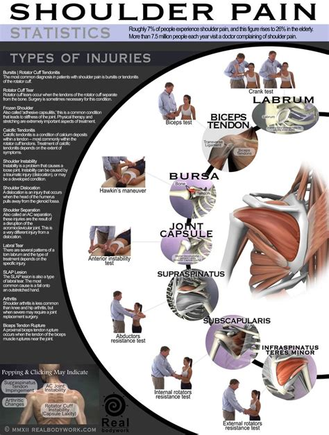 Is Backpain A Common Detox Symptom by Shoulder Types Of Injuries Kicking My
