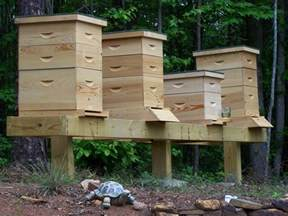 Backyard Bee Keeping by Simple Hive Stand Mountain Sweet Honeymountain Sweet Honey