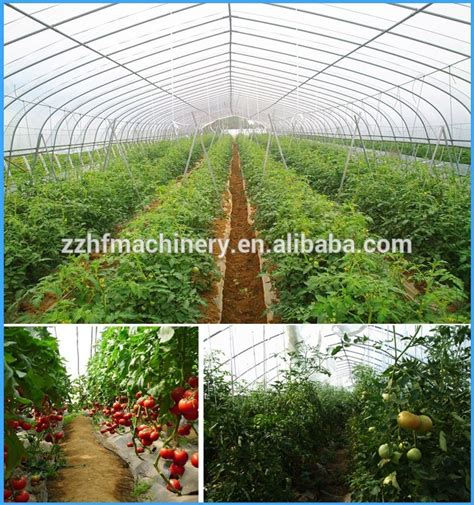 One Stop Gardens Greenhouse by One Stop Gardens Greenhouse Lean To Greenhouse Buy Lean To Greenhouse Green Houses One Stop