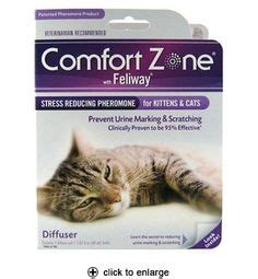 comfort zone cat 1000 images about animal care grooming recipes info