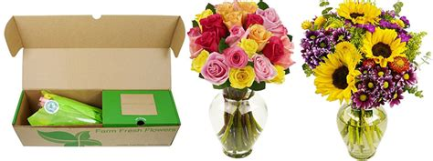 how to keep flowers fresh overnight amazon farm fresh flowers with vase starting at 26 77