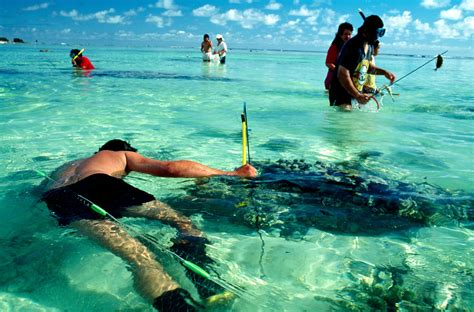 Cook Search In Search Of The Cook Islands New Zealand Geographic