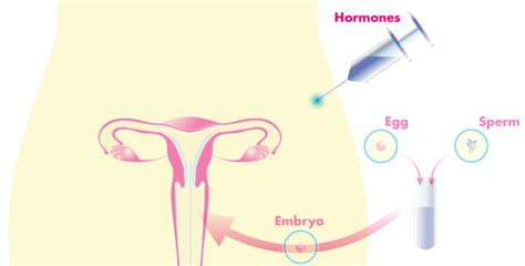 Detox After Successful Ivf Drugs by Ivf Treatment Center In Chennai Best Hospital In Chennai