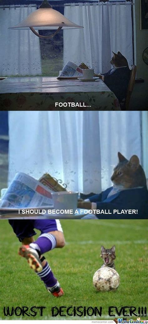 cat football memes best collection of funny cat football