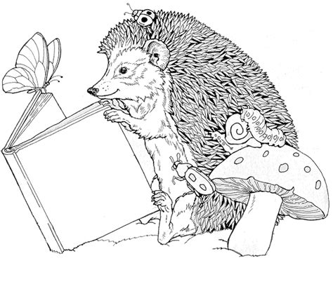 cute hedgehog coloring pages hedgehog coloring pages coloringpages1001 com
