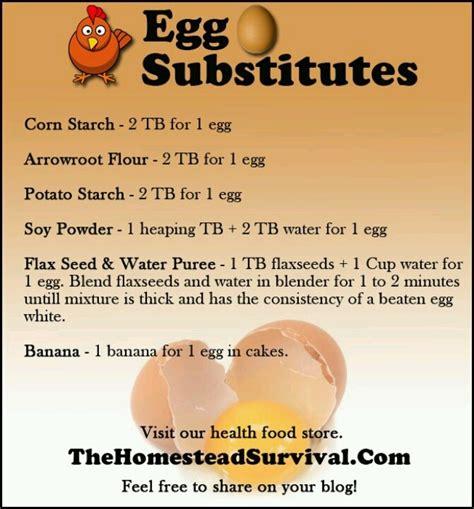 egg substitute for vegans eat don t regret pinterest