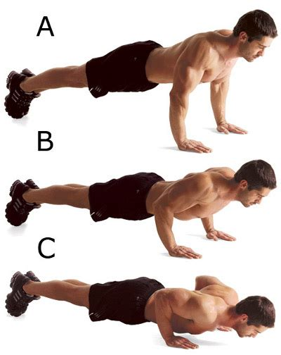 bench press or push ups decline bench dumbbell press sports and health