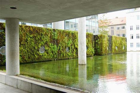 Vertical Garden Toronto Living Vertical Gardens To Grow