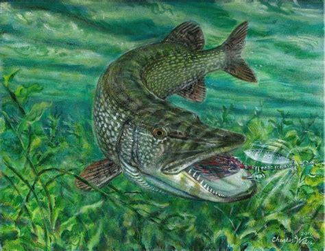 images  fish  pinterest fish paintings