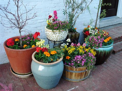 Small Container Garden Ideas New Home Designs Home Small Potted Gardens Ideas