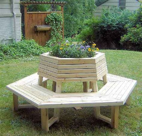 bench tree group cedar wood outdoor furniture