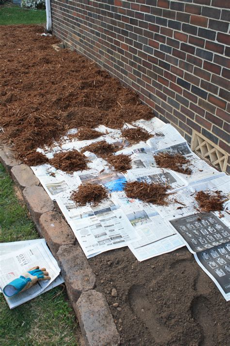 Landscape Fabric Newspaper Manscaping Phase 2 A Guest Post From Aaron Rosemary