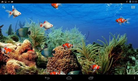 live wallpaper for pc aquarium aquarium live wallpaper free android live wallpaper