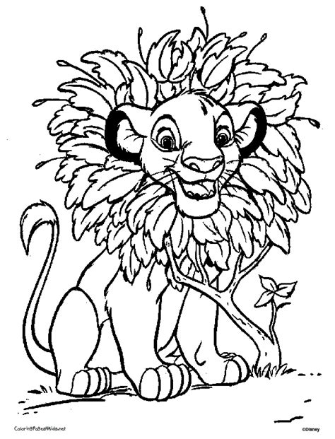 Baby Simba Coloring Pages Az Coloring Pages Baby Simba Coloring Pages