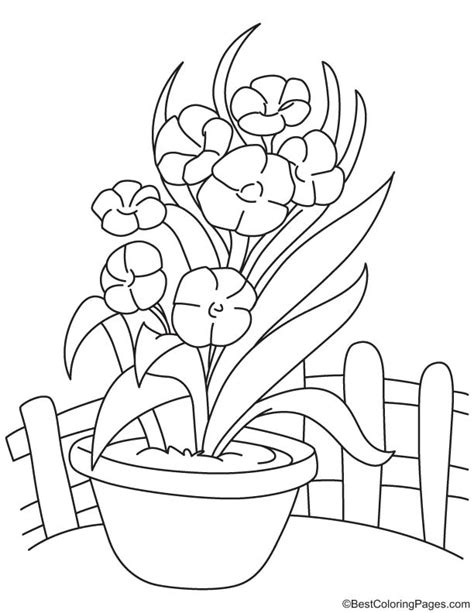 coloring pages of flowers in a vase vase of flowers coloring page free printable pages and
