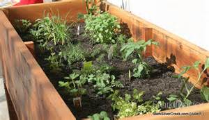Vegetable planter box photos tips and diy plans stark insider