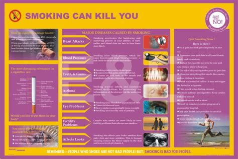 Can Detox From Drugs Kill You by Employee Welfare Posters Say No To Addiction Tobacco