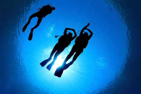 dive instructor so you want to be a scuba instructor a look inside the