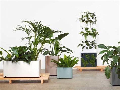 indoor plant pots the best indoor plant stands pots and hangers for your home tlc interiors