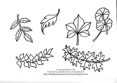 imagenes de animales y plantas para colorear dibujos para imprimir y colorear gratis para ni 241 os dibujo