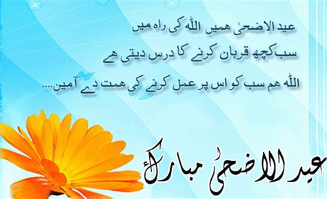 theme park meaning in urdu punjabi sms don pk education sports wallpapers auto