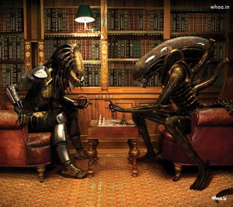 alien  predator play chess funny hd wallpaper